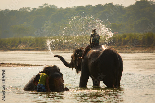 Tuinposter Olifant Man washing his elephant on the banks of river