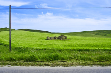 Cottage in countryside: beautiful green landscape.