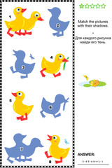 Match to shadow visial puzzle - ducklings