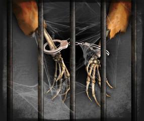 Forgotten Prisoner