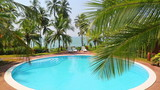 palm leaf in front of the swimming pool by the sea on a tropical