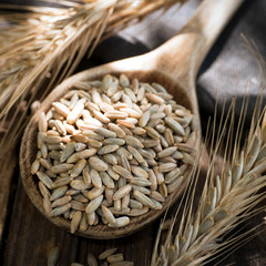 Getreide, Roggen