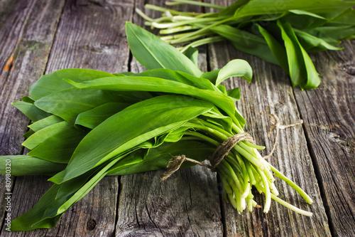 ramson (bear garlic) bunch - 80980320