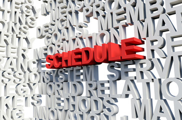 SCHEDULE Word in red, 3d illustration.