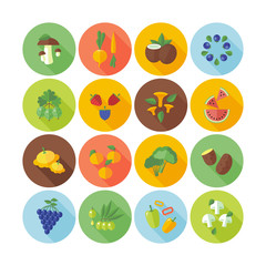 Set of flat circle icons. Fruits, vegetables and  mushrooms.