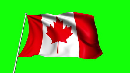 Canada flag with fabric structure (loop, green background)