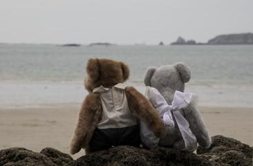 Teddy bear loving at the sea