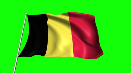 Belgium flag with fabric structure (loop, green background)