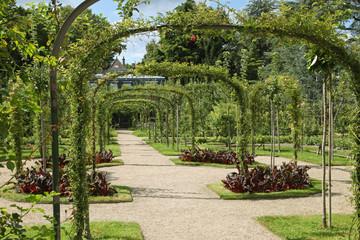 Jardin anglais Albert Kahn