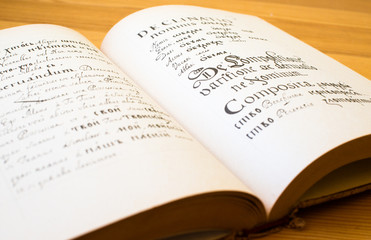 The Old Slavonic Grammar