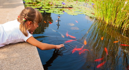 Little girl plays with ornamental fish that swim in  pond