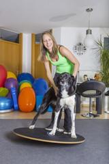 Hund Therapie