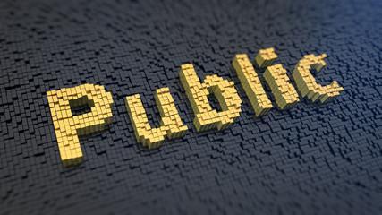 Public cubics