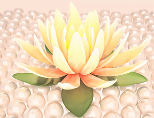 Lotus and pearls.
