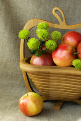 Autumn still life with red apples and green chrysanthemum