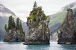 Sea Stacks, Kenai Fjords National Park, Alaska - 81020999