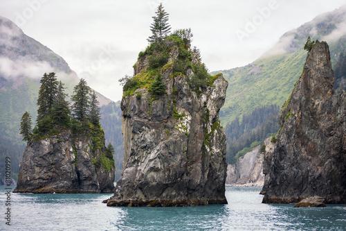 Sea Stacks, Kenai Fjords National Park, Alaska - 81020999