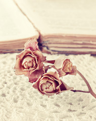 dry rose on the book in vintage style