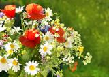 Wiesenblumenstrauss, Strauss aus frischen wildblumen, copy space