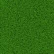 Green soccer grass field seamless background texture - 81030308