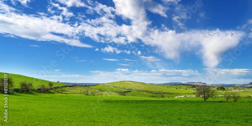 Colline verdi con nuvole nel cielo azzurro - 81031519