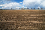 Abstrakcyjny krajobraz pola uprawnego