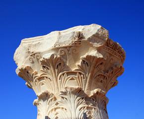 Column's Capital