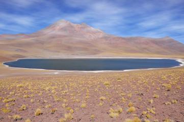 View of Miniques Lagoon. Atacama desert.