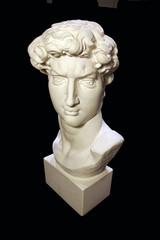 The gypsum head of David
