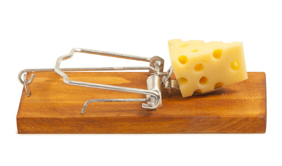 Mousetrap with cheese