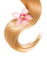 blond Hair with flower isolated on white background