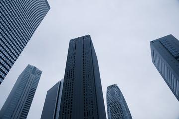 Skyscrapers Of Shinjuku