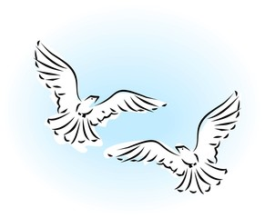 Sketch of two flying dove