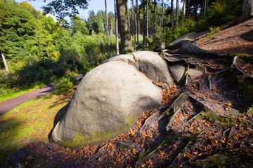 large boulder in the woods of the Bohemian Paradise