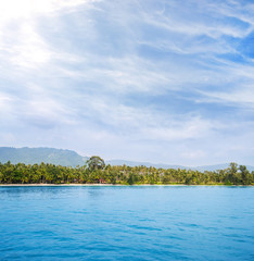 Tropical forest, sea coast and mountains