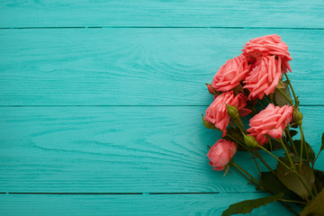 Pink roses on blue wooden background