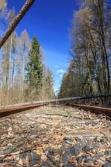 Sturmschaden - Bäume liegen auf Schiene
