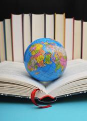 Die Welt im Buch