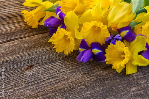 Foto op Canvas Iris easter daffodils and irise