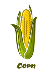 Cartoon yellow corn vegetable on the cob