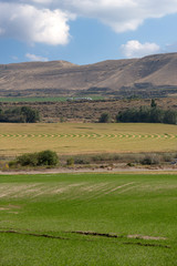 Farmland with irrigated fields and crops