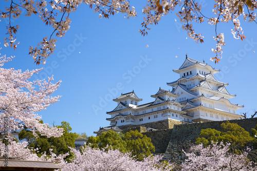 Plexiglas Japan 姫路城と桜吹雪