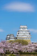 修理完成後の姫路城と桜