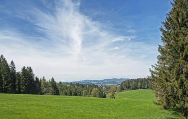 draussen im Schwarzwald