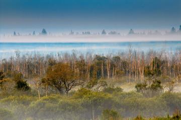 Polska Amazonia