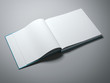 Opened book with blank pages - 81073191