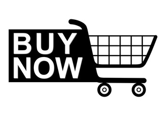 Buy Now Shopping Cart