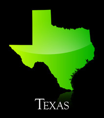 Texas green shiny map
