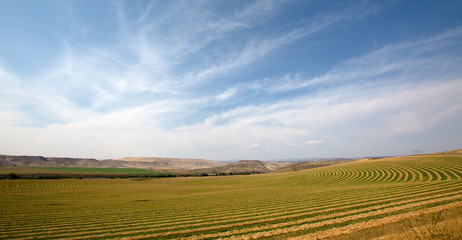 Center pivot farm