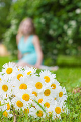 bouquet of white daisies meadow lies on green grass